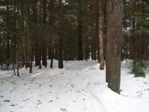 Enjoy a winter hike!