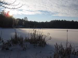 Town Pond winter